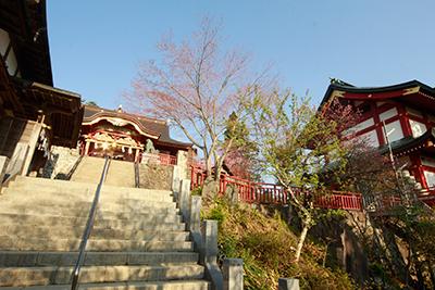 武蔵御嶽神社|御岳山 天空の宿坊 能保利