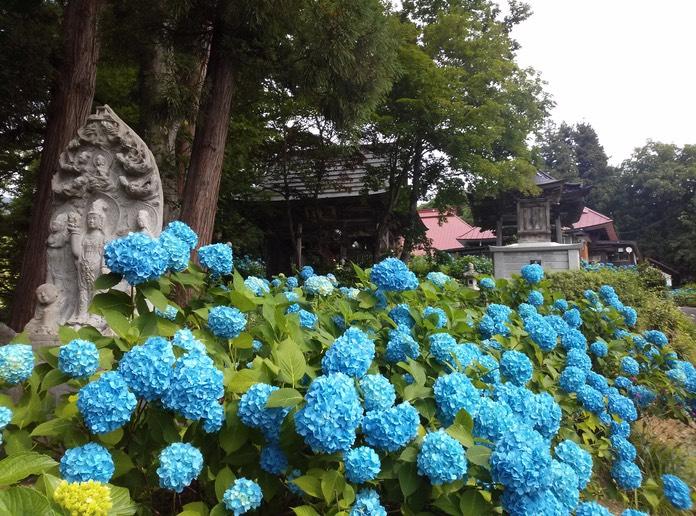 高源院|高原荘
