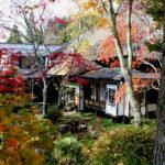 戸隠神社|宿坊旅館 武井旅館